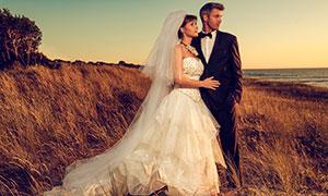 站在荒草丛中的人物婚纱照摄影图片