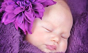 紫色毛毯包裹着的宝贝摄影高清图片