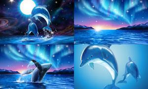 极光与水中跃出的海豚创意矢量素材