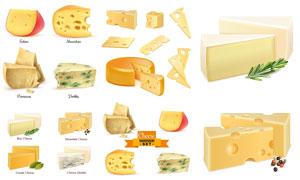 芝士与奶酪等牛奶衍生品主题矢量图
