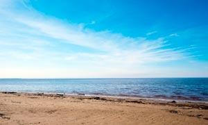 蓝天下的海边沙滩美景摄影图片