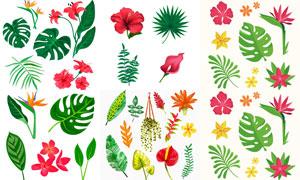 植物绿叶红花水彩创意主题矢量素材