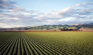 美丽的农场俯拍图高清摄影图片