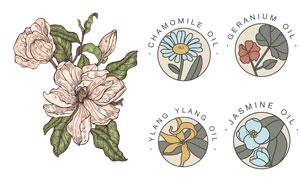 素描效果多种花朵主题设计矢量素材