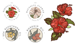 红色花朵等素描效果主题设计矢量图