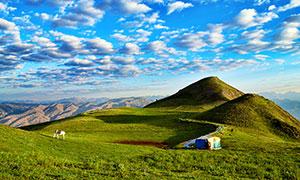 藍天白云下的山頂草地美景攝影圖片