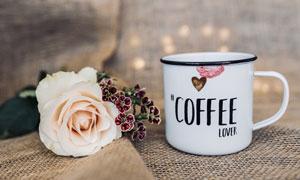 一朵玫瑰花与搪瓷缸子摄影高清图片