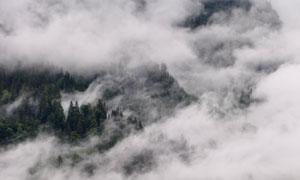 大雾中的山间树林风光摄影高清图片
