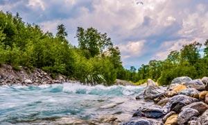 岩石树木与湍急的河水摄影高清图片