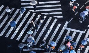 撑伞过马路的人群航拍摄影高清图片