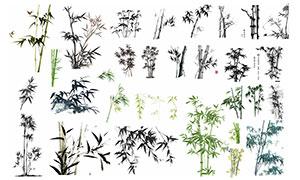 中国风水墨竹子和竹『叶矢量素材