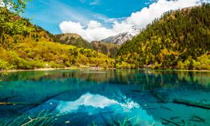 山脚下美丽的青海湖风光摄影图片