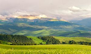 新疆特克斯草原美丽风光摄影图片