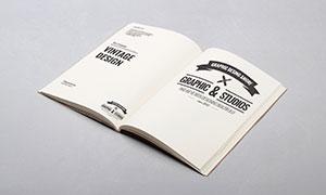 多用途画册书籍内页展示效果源文件
