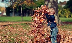 在公园里玩落叶的小男孩摄影图片