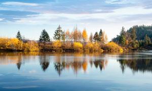 秋季湖边树林美景高清摄影图片