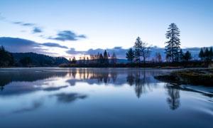 傍晚湖边和树林景观高清摄影图片