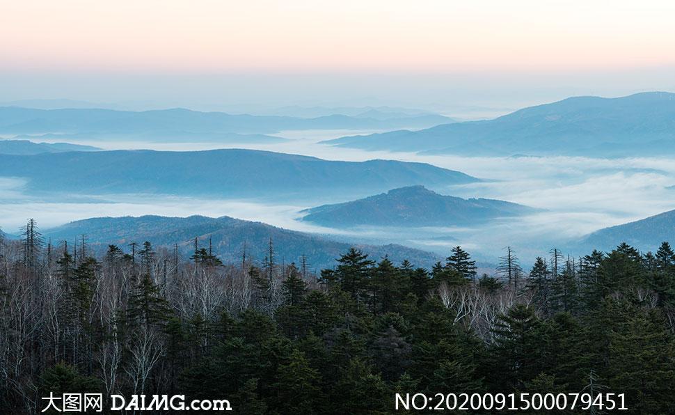 山中森林和远山云海高清摄影图片