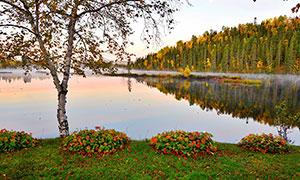 秋季傍晚湖泊倒影和森林摄影图片