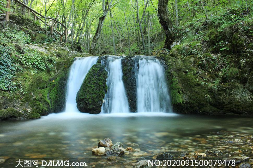 树林中的小溪流水高清摄影图片