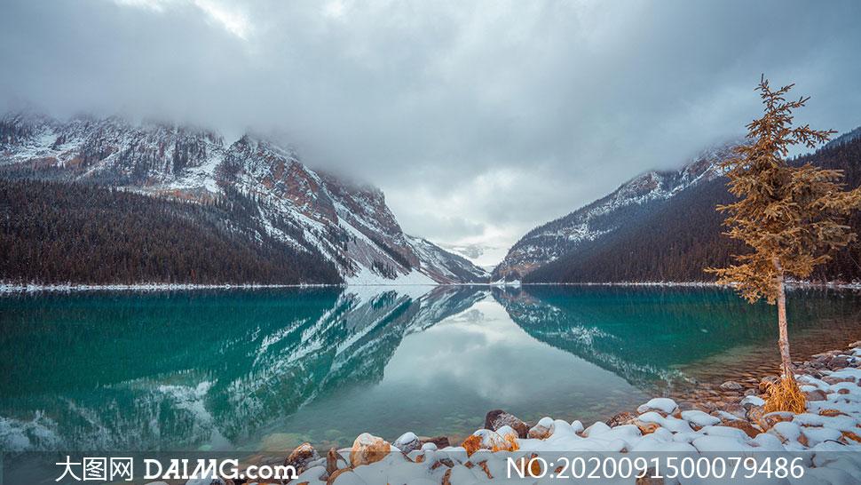 雪后湖边积雪景观高清摄影图片