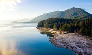 湖边的森林美景高清摄影图片