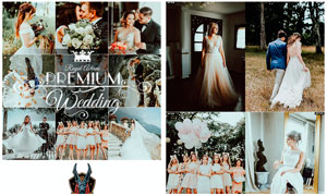 婚礼照片暗冷色艺术效果PS动作