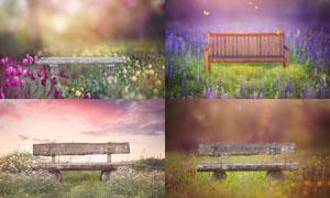 公园里花草装饰的长椅主题高清图片