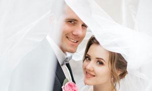 情浓时刻新郎新娘人物摄影高清图片