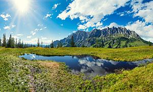 阳光下的小池塘和倒影摄影图片