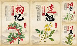 中國風中草藥宣傳掛圖設計PSD素材