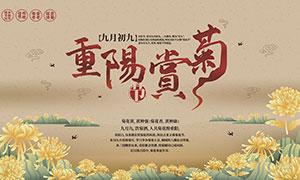 重陽節賞菊宣傳展板設計矢量素材