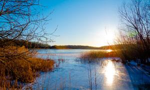 冬季早晨湖边美丽风光高清摄影图片