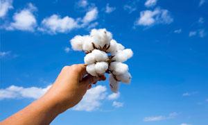 手里那种棉花球看向天空摄影图片