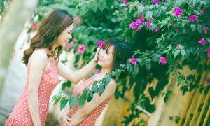花藤下的红裙美女高清摄影图片