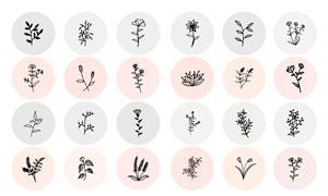 黑白手绘花卉植物主题设计矢量素材