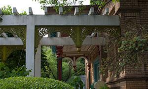 绿化景观装饰的建筑物摄影原片素材