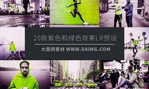 20款紫色和绿色艺术效果LR预设