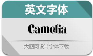 Camelia(英文字体)