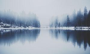 冬季雾气蒙蒙下的湖泊和树林摄影图片