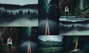 8款森林照片暗色藝術效果LR預設