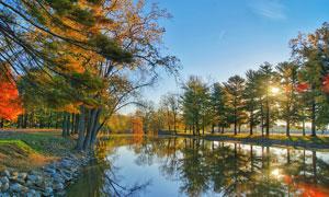 公园来的河流和树木倒影摄影图片