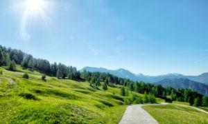 绿色山坡上的小路摄影图片