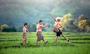 三个在田间行走的孩子摄影图片
