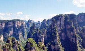 张家界景区士林景观摄影图片