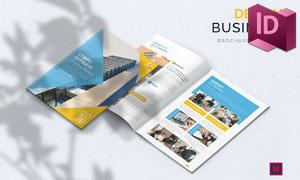 黄蓝配色企业宣传用途画册版式模板