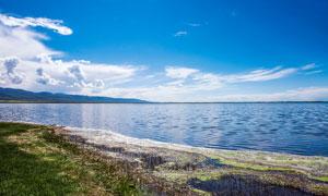 蓝天下美丽的青海湖摄影图片