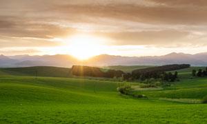 草原上的日出美景摄影图片