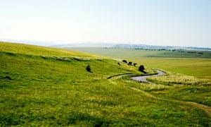 田园中弯曲的公路摄影图片