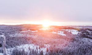 冬季雪后森林日出美景摄影图片